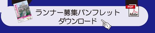 run_pdf