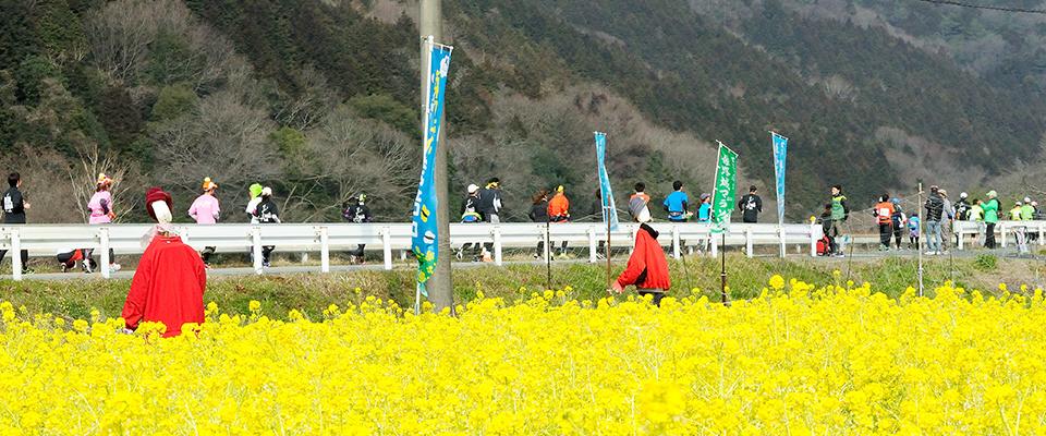 世界遺産姫路城マラソン2016の様子